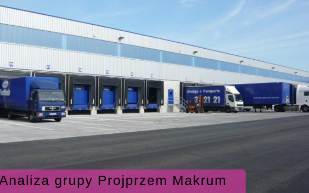 Discussion of the results of the Projprzem Makrum Group on the Analysis Portal
